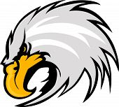 stock photo of eagle  - Graphic Mascot Vector Image of an Eagle Head - JPG