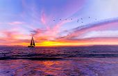 Ocean Sunset Sailboat Is A Vibrant Ocean Sunset With A Sailboat Sailing Along The Water With A Flock poster
