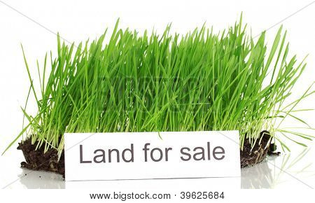 Green grass with ground as concept of land sale isolated on white