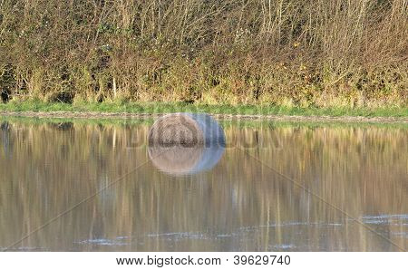 Hay bail with reflection