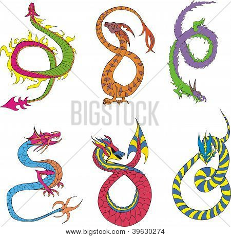 Long Japanese Dragon Worms