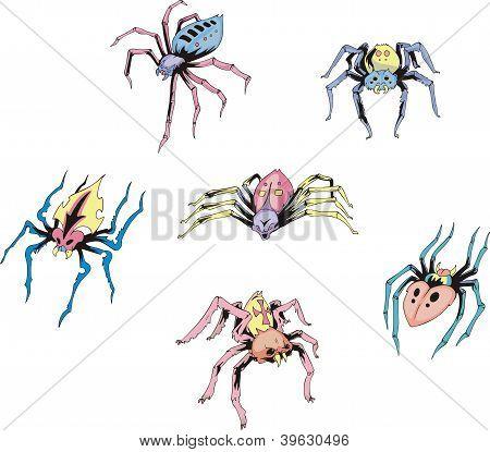 Set Of Spider Tattoos