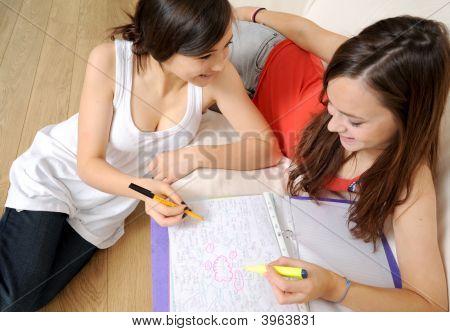 Friends Study