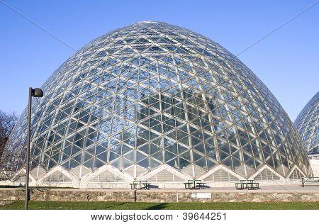 Jardim botânico sob a cúpula