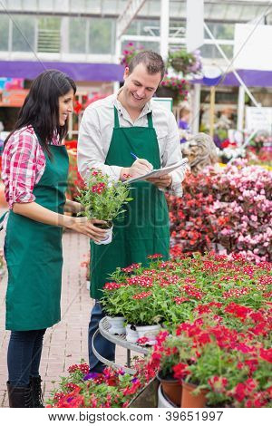 Two garden center employees making notes on flower pots