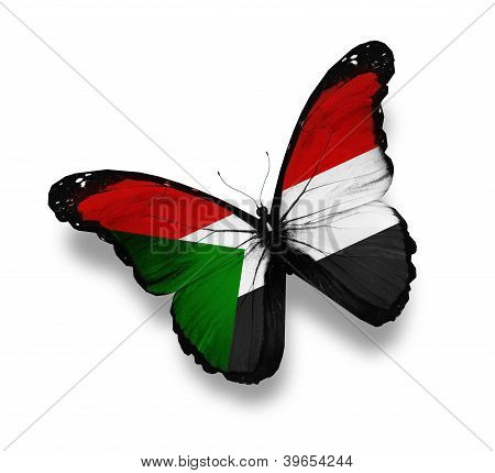 Sudanese Flag Butterfly, Isolated On White