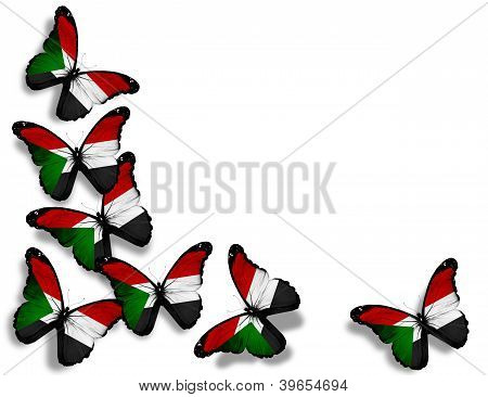 Sudanese Flag Butterflies, Isolated On White Background