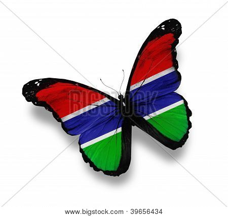 Republic Of The Gambia Flag Butterfly, Isolated On White
