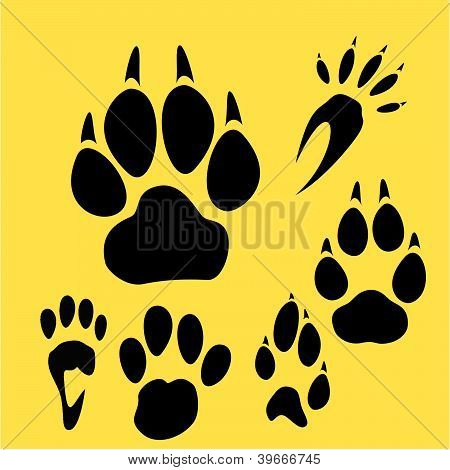 Footprints vector set.