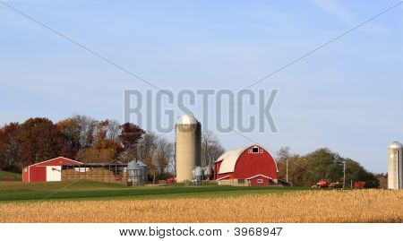 Farm In Late Autumn