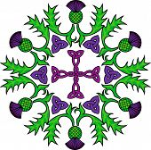 picture of scottish thistle  - Celtic cross in a circle wreathed with flowers of thistles - JPG