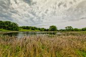 stock photo of wetland  - Natural Wetlands at Sibley State Park Minnesota - JPG