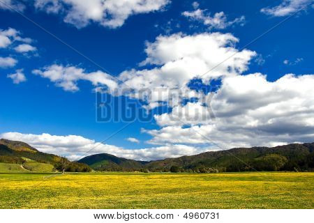 Pure Sky, Pure Meadow