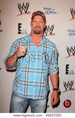LOS ANGELES - AUG 15:  Steve Austin at the Superstars for Hope honoring Make-A-Wish at the Beverly Hills Hotel on August 15, 2013 in Beverly Hills, CA