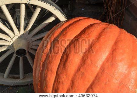 Pumpkin and cartwheel