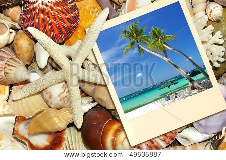 memories about tropical vacations