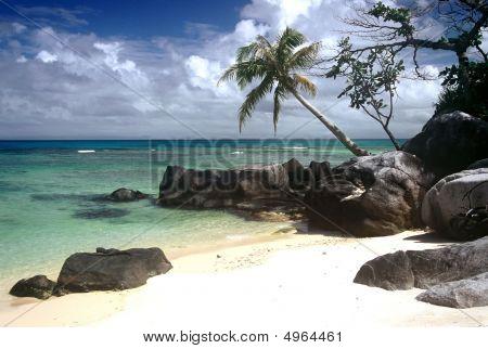 Tropical Beach,madagascar