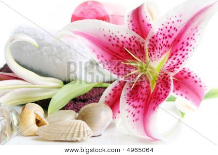 Spa Scene With Lilies