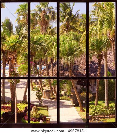 view of a tropical garden through a panoramic window