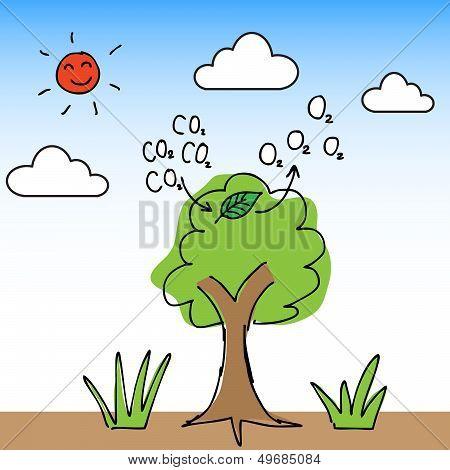 Oxygen Tree