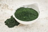picture of green algae  - small bowl of Hawaiian spirulina powder against a ceramic tile  background - JPG