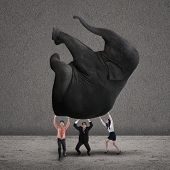 Business Teamwork Lifting Elephant On Grey