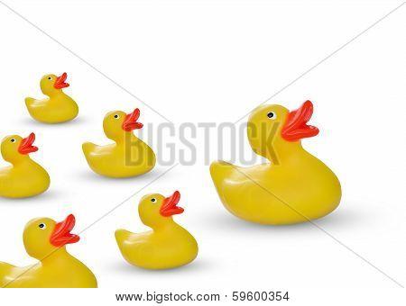 Rubber Ducklings