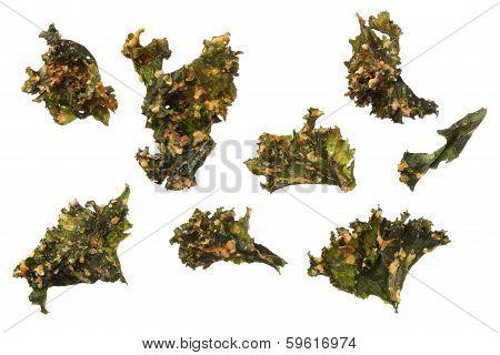 Roasted Kale Chips Isolated On White Background