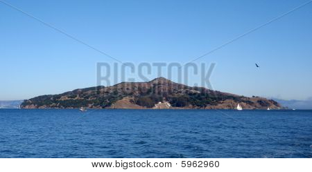 Angel Island With Bird Flying By