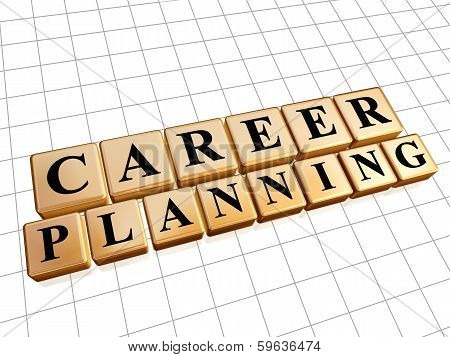 Career Planning In Golden Cubes