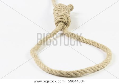 Noose On White
