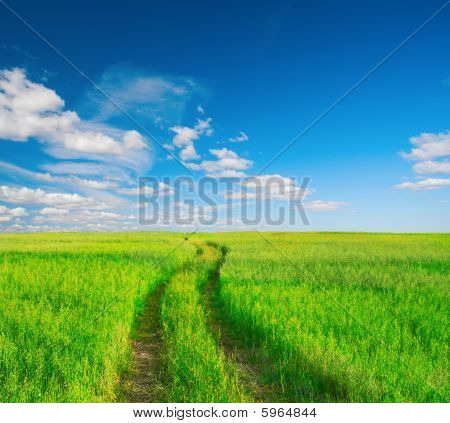 beautiful summer landscape with dirt road