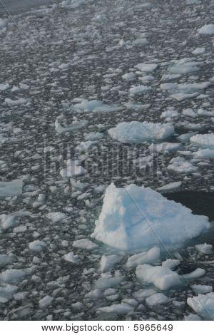 Icebergs And Brash Ice In Calm Seas