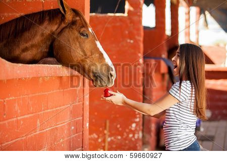Having fun and feeding my horse