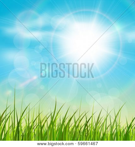 Spring natural sunny background with vector sun and grass.