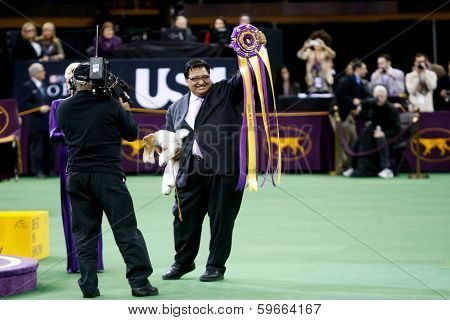 NEW YORK-FEB 11: Sky, a wire fox terrier with handler Gabriel Rangel, wins 'best in show' at the 138th Westminster Kennel Club Dog Show at Madison Square Garden on February 11, 2014  in New York City.
