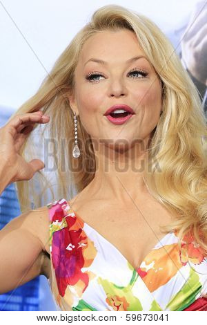LOS ANGELES - FEB 10: Charlotte Ross at the premiere of Columbia Pictures' 'Robocop' at TCL Chinese Theatre on February 10, 2014 in Los Angeles, California