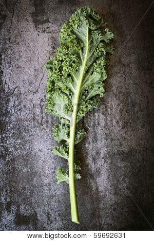 Kale leaf, overhead view on dark slate.