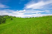 stock photo of pieniny  - Beautifull View To Slovak Landscape - JPG