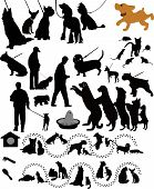 Постер, плакат: Dogs cats of a rat animals a vector