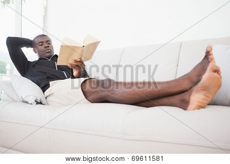 Casual man sitting on his sofa reading a book at home in the living room