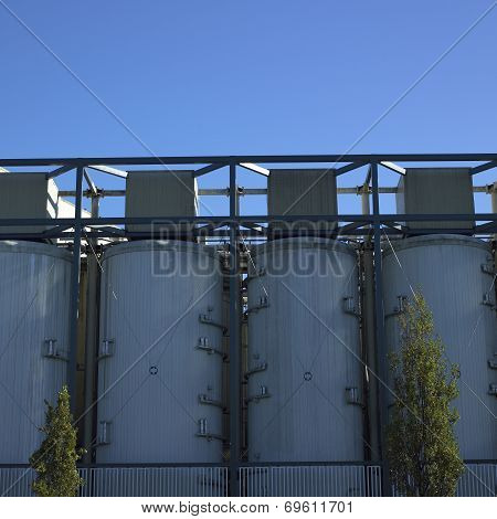 Large White Vats