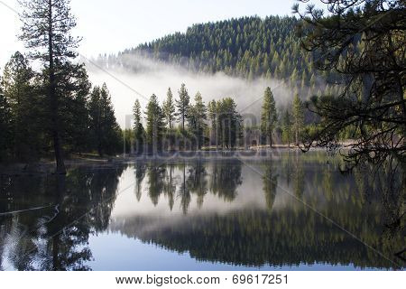 Morning Fog on Lake