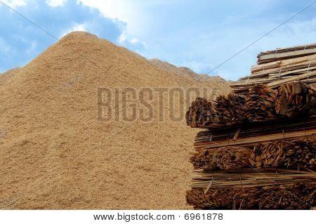 Biomass Combustion