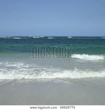 Tropical Ocean Waves