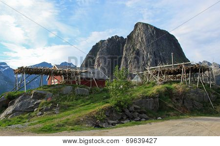 Drying stockfish on Lofoten islnads, Norway