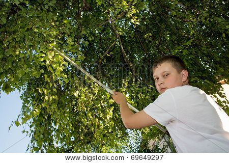 Young Boy Cut The Tree Branches With A Long Secateurs