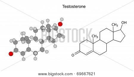 Structural Chemical Formulas Of Testosterone Molecule