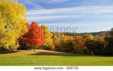 Golf Course Color