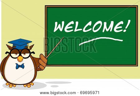 Wise Owl Teacher Cartoon Character In Front Of School Chalk Board With Text